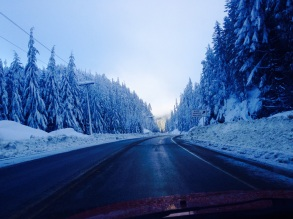 One last drive to Ucluelet